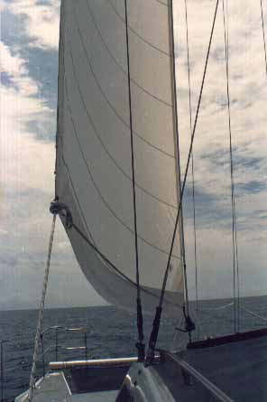Home - Manders Sails - We Make Sails For All Types Of Yachts